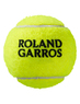 Теннисные мячи Wilson Roland Garros All Court 72 (24x3)